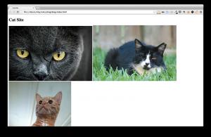Cat Site v.1